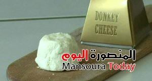 _69080197_donkeycheese